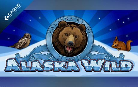 alaska wild spielautomat - casino technology