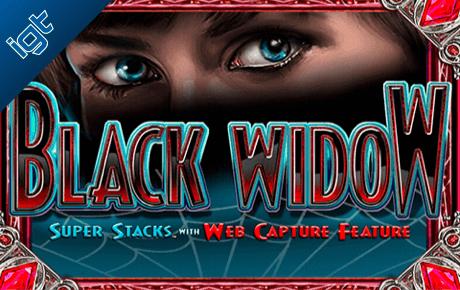 black widow spielautomat - igt wagerworks