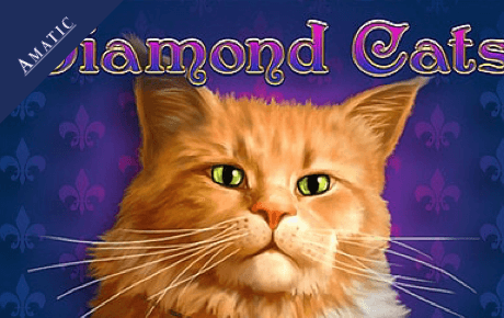 diamond cats spielautomat - amatic industries