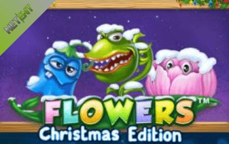 flowers christmas edition spielautomat - netent