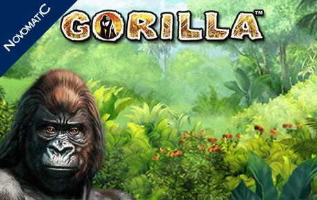 gorilla spielautomat - novomatic