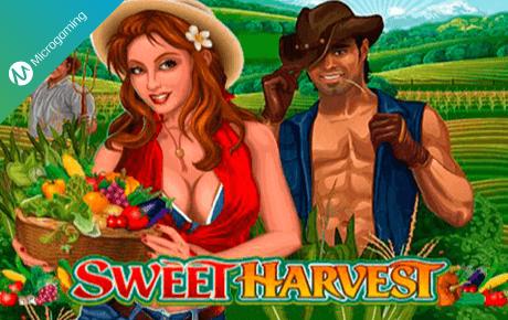 sweet harvest spielautomaten - microgaming